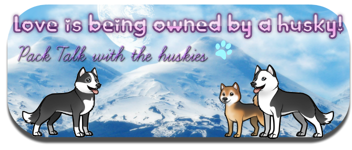 Love is being owned by a husky