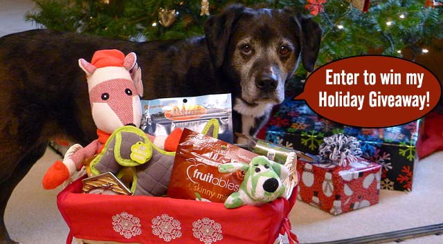 Haley's Holiday Gift Giveaway
