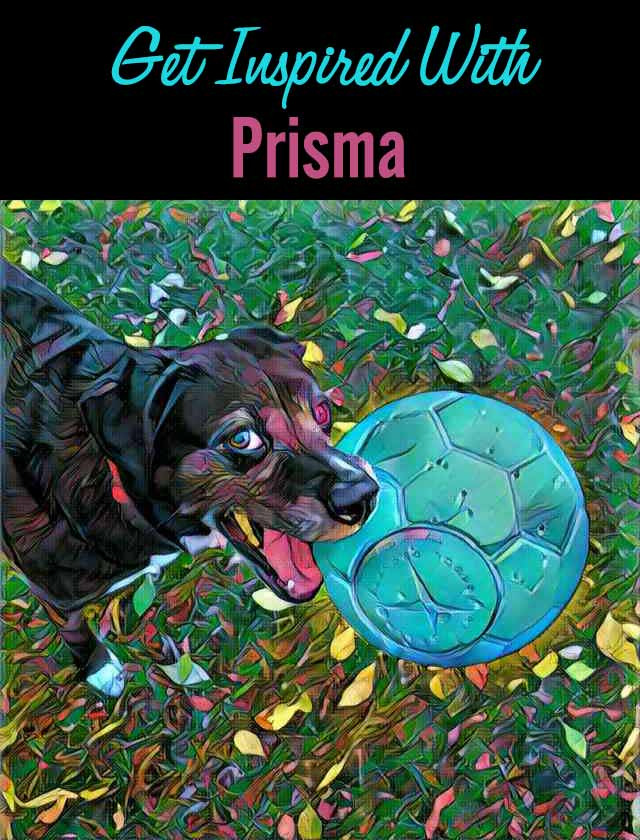 Get Inspired With Prisma