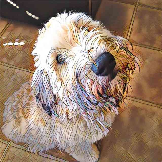 Dog With Prisma Mosaic Effect