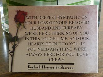 Chewy Sympathy Note