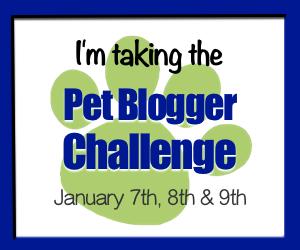 2017 Pet Blogger Challenge
