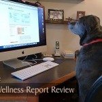 Pet Wellness Report Review