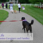 Bark for Life Honors Canine Caregivers and Families