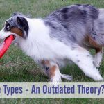 Dog Drive Types - An Outdated Theory?