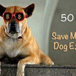 50 Ways to Save Money on Dog Expenses